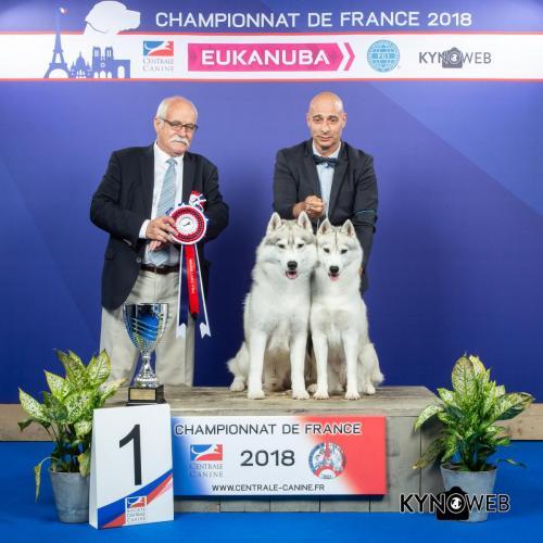 CP 113 LR CHAMPIONNAT DE FRANCE 2018