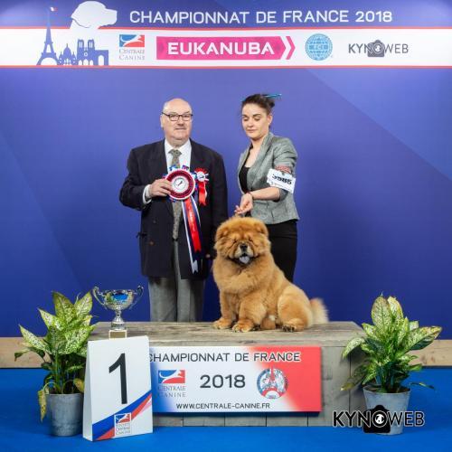 C 3585 LR CHAMPIONNAT DE FRANCE 2018