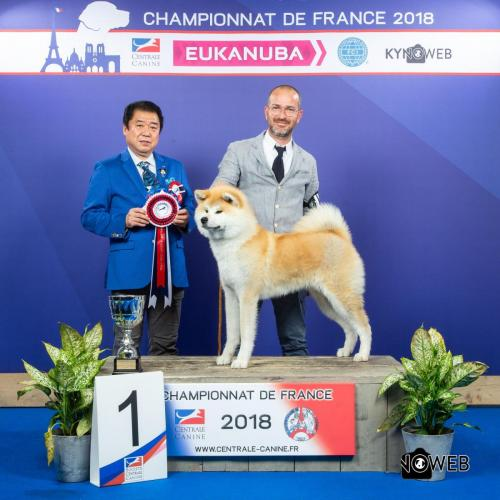 C 3717 2 LR CHAMPIONNAT DE FRANCE 2018