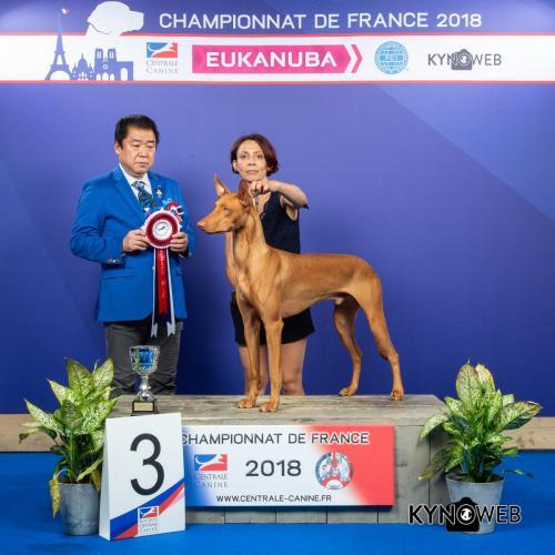 C 3909 LR CHAMPIONNAT DE FRANCE 2018