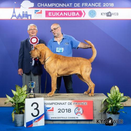 C 3963 LR CHAMPIONNAT DE FRANCE 2018