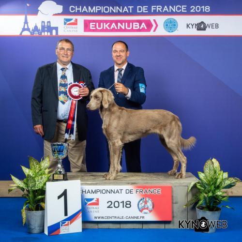 C 4565 LR CHAMPIONNAT DE FRANCE 2018