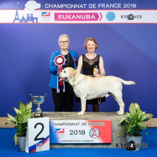 C 4939 LR CHAMPIONNAT DE FRANCE 2018