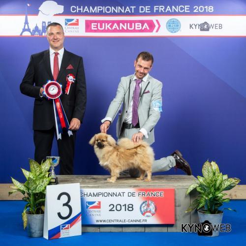 C 5674 LR CHAMPIONNAT DE FRANCE 2018