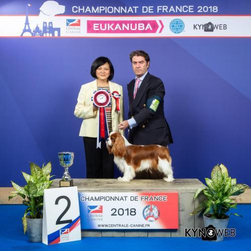 C 5969 LR CHAMPIONNAT DE FRANCE 2018