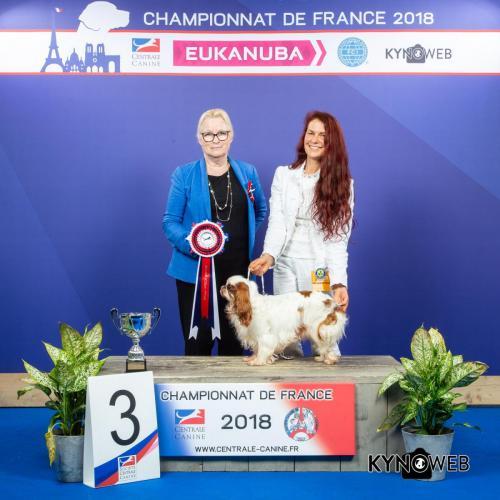C 6057 LR CHAMPIONNAT DE FRANCE 2018