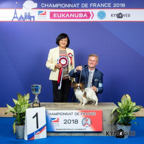 C 6124 LR CHAMPIONNAT DE FRANCE 2018 1