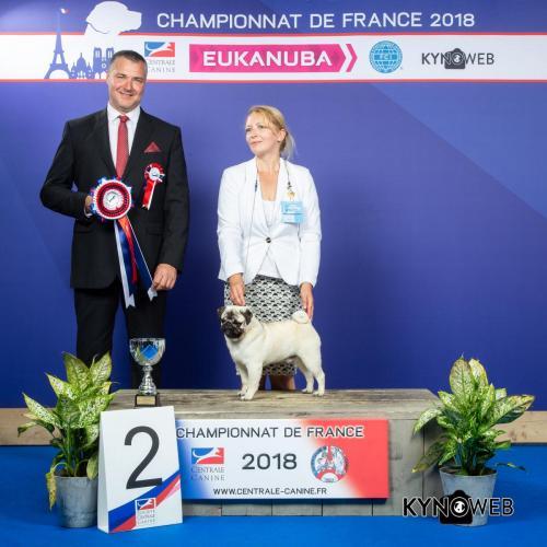 C 6467 LR CHAMPIONNAT DE FRANCE 2018