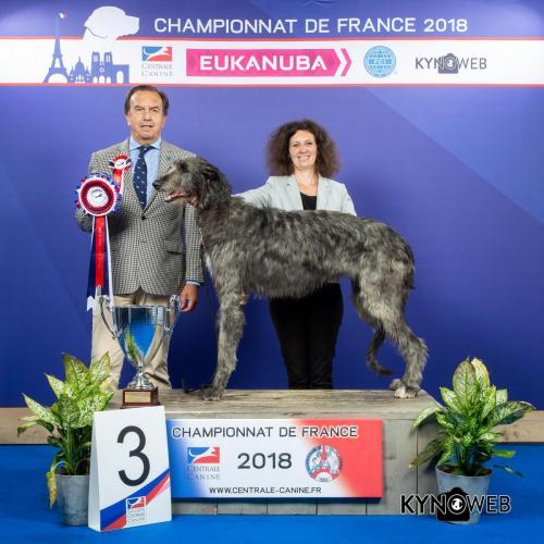 G 3037 LR CHAMPIONNAT DE FRANCE 2018