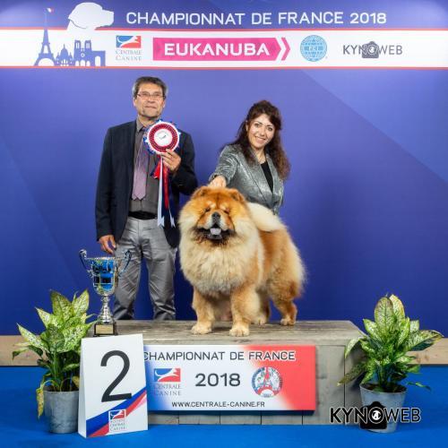 G 3597 LR CHAMPIONNAT DE FRANCE 2018