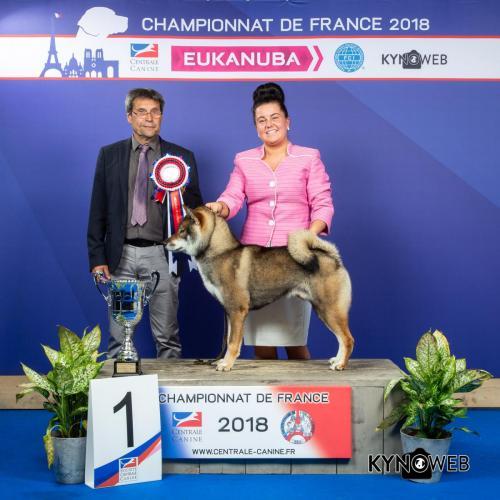 G 3902 LR CHAMPIONNAT DE FRANCE 2018