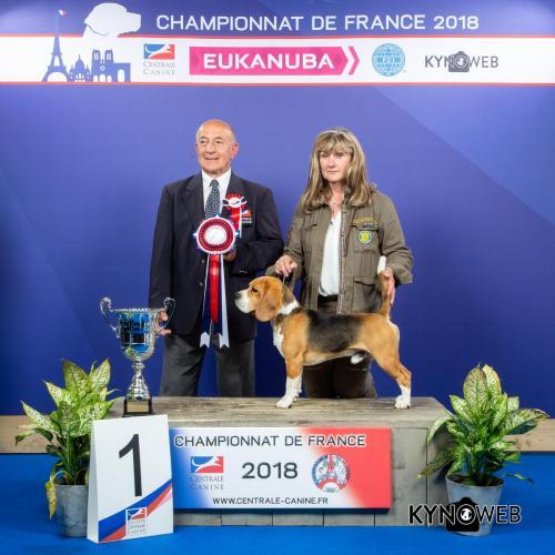 G 4297 LR CHAMPIONNAT DE FRANCE 2018