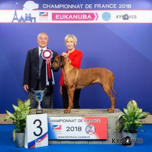 G 4466 LR CHAMPIONNAT DE FRANCE 2018