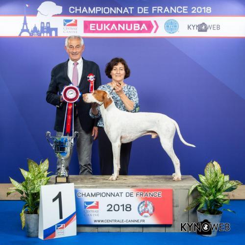 G 4602 LR CHAMPIONNAT DE FRANCE 2018