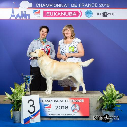 G 4935 LR CHAMPIONNAT DE FRANCE 2018