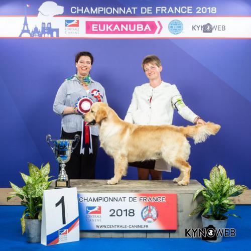 G 4982 LR CHAMPIONNAT DE FRANCE 2018