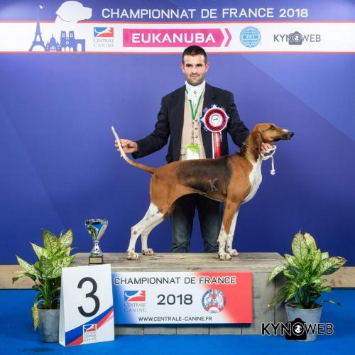 NATB 3992 LR CHAMPIONNAT DE FRANCE 2018