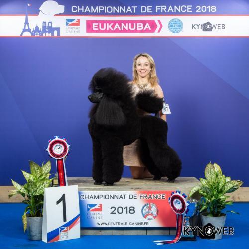 NATB 5397 LR CHAMPIONNAT DE FRANCE 2018