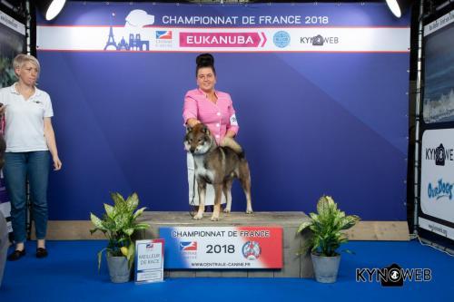 NATB  LR CHAMPIONNAT DE FRANCE 2018