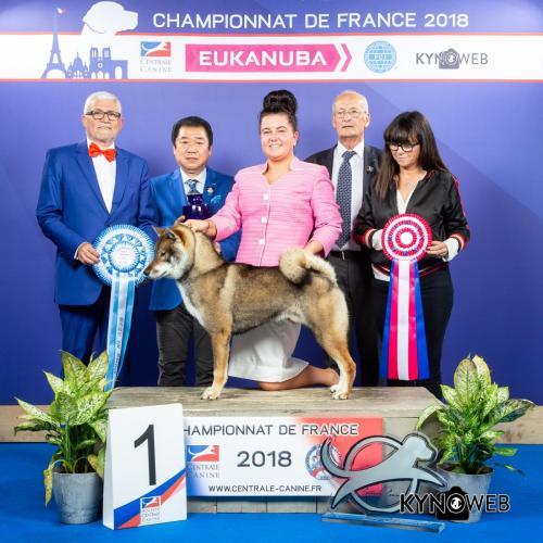 S 3902 LR CHAMPIONNAT DE FRANCE 2018